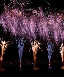 AQF_Chinese New Year celebration testimonial